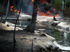 Shell confirms multiple spills in Bayelsa oil fields - http://www.77evenbusiness.com/shell-confirms-multiple-spills-in-bayelsa-oil-fields/