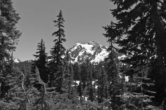 Mount Shuksan - near Artist Point, Washington.