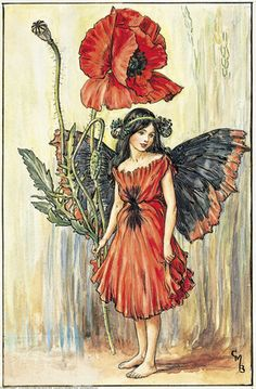 Illustration for the Poppy Fairy from Flower Fairies of the Summer. A girl fairy stands holding a poppy in her right hand.  										   																										Author / Illustrator  								Cicely Mary Barker