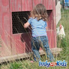 Distelrath Farms | Indy with Kids