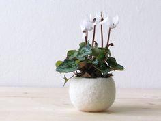 Felt succulent planter / felted bowl / Mini flower vase vase / White for Christmas / place holder on Etsy, $21.00
