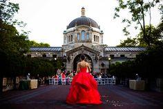 Lauren and Neil's wedding at the Bronx Zoo in New York, New York via Chrisman Studios