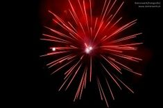 New Year's Eve & New Year in Austria - Schwein - Neujahr I Quit, Star Shape, New Years Eve, Ceiling Lights, Sea Urchin, Deep Water, Amp, Austria, Purpose