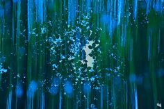 https://flic.kr/p/Nod6sv   forest dream