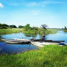 Okavanga delta, Maun, Botswana Okavango Delta, Flora, Our World, Places Ive Been, Golf Courses, To Go, Australia, River, Adventure