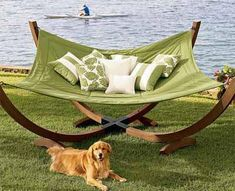 Golden retriever AND a hammock! Did this this image get picked from one of Laura Cauthen's dreams?!