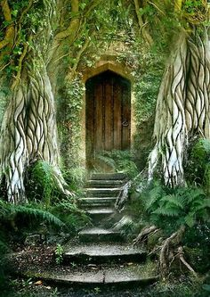 I'm pretty convinced magic takes place behind this door, can you image walking through this, every day?