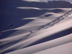 #Skitouren über dem #Kiental: Unterwegs im sagenhaften Kiental. Eines der grössten Jagdbanngebiete der Schweiz und ein #Geheimtipp für #schneesichere Touren mit #Pulverschnee.
