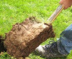 Rasensode auf Spaten - Rasen entfernen