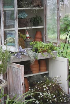 Love this old cupboard made garden shed.