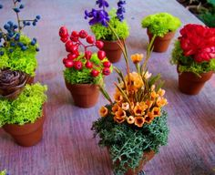 clay miniatures potted flowers