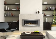 Napoleon Gas Fireplace Design