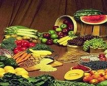 Garden Vegetables and Fruits