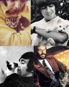 Beatles and their cats! Paul McCartney, George Harrison (RIP), John Lennon (RIP), & Ringo Starr http://wsaentertainment.com/