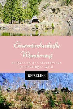 Ein perfekter Ausflug in den Märchenwald. Was du auf diesem Wanderweg alles entdecken kann, erfährst du hier!