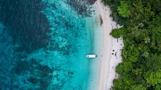 Tioman Island Malaysia an unknown paradise of coral reefs and jungle PescArt