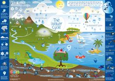 A great poster displaying the water cycle - in celebration of World Water Day and the 2013 United Nations Year of Water Cooperation! Water Cycle Chart, Water Cycle Poster, Poster Display, School Displays, World Water Day, Energy Conservation, Charts For Kids, Water Resources, Geography