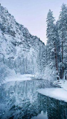 211 Best Winter Images In 2020 Winter Aesthetic Winter Winter