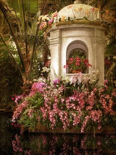 Orchid Garden by Jessica Jenney
