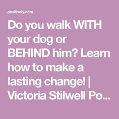 Do you walk WITH your dog or BEHIND him? Learn how to make a lasting change! | Victoria Stilwell Positively