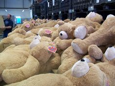 So many Big Hunka Love Bears!