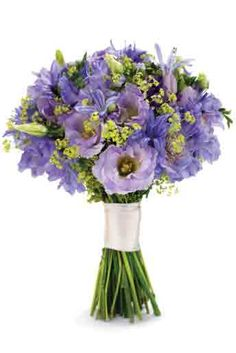 Hand-tied bouquet of brodea, agapanthus, scabious and alchemilla,