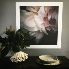 The peony is now available as a photographic print