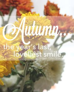 autumn... the year's last loveliest smile  {was eigenes}