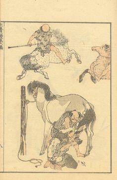 Japanese Art Modern, Japanese Prints, Art Occidental, Oriental Flowers, Japan Painting, Katsushika Hokusai, Historian, Asian Art, Manga Art