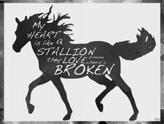 """I love this lyric from """"Alone Together."""" A horse must be """"broken"""" before it can win races and capture the heart of a nation. This is a common theme in Fall Out Boy lyrics - how they must experience heartbreak in order to make music that captures our (the listeners') hearts. I can think of at least five FOB songs that relate back to this."""