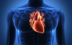 As 10 Dicas Para Fortalecer a Saúde do Coração