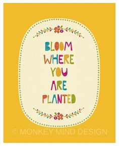 bloom where you are planted poem - Google Search