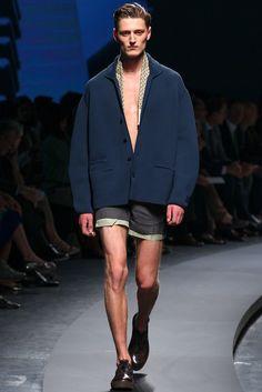 Ermenegildo Zegna Spring 2014 Menswear Fashion Show Collection