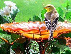 Suncatcher BIRD BATH Stained glass Garden by GloriasGlassGarden