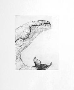 Baleine 3