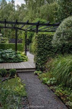 Pergola Garden, Garden Trellis, Garden Bridge, Garden Yard Ideas, Side Garden, Privacy Landscaping, Garden Landscaping, Back Gardens, Outdoor Gardens