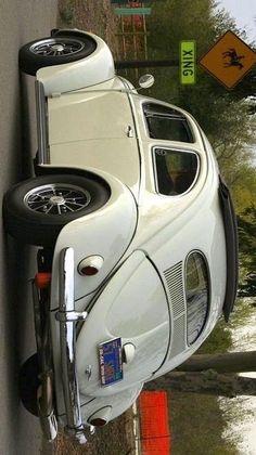 Classic VW Oval Window