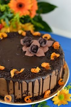 Tort cu crema de ciocolata si portocale - CAIETUL CU RETETE Romanian Desserts, Romanian Food, Something Sweet, Sweet Bread, Pie Recipes, Cake Cookies, No Bake Cake, Chocolate Cake, Cheesecake