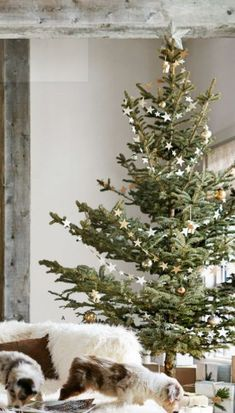 31 Beautiful Scandinavian Christmas Tree Decoration Ideas The little attention to the absolute most passionate party of the year Eieiei, the Christmas celebra Scandinavian Christmas Decorations, Scandi Christmas, Decoration Christmas, Country Christmas, Minimalist Christmas Tree, White Christmas, Natural Christmas Decorations, Hygge Christmas, Minimal Christmas