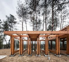 Gallery of Pine Park Pavilion / DnA - 16