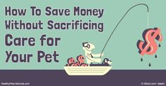 By spending your pet care budget wisely, you can actually save money by reducing…