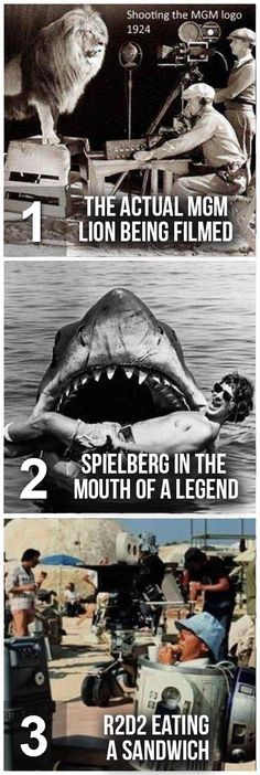 Behind the scenes pics of the most iconic moments in film history. Behind the scenes pics of the most iconic moments in film history. Iconic Movies, Classic Movies, Great Movies, Love Film, Love Movie, Movie Tv, Jaws Movie, Movie Facts, Iconic Photos