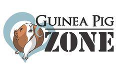 guinea pig logo - Buscar con Google