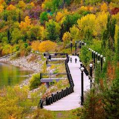 The Best Travel Destinations To Visit Places Around The World, Around The Worlds, Canada Holiday, Western Canada, Visit Canada, Autumn Scenery, Alberta Canada, Canada Travel, British Columbia