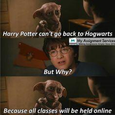 Harry Potter Mems, Cute Harry Potter, Mundo Harry Potter, Harry Potter Actors, Harry Potter Pictures, Harry Potter Universal, Harry Potter World, Humour Geek, Humor