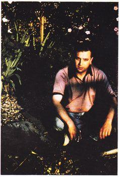 1978, Syd in the Garden
