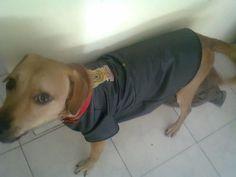 Romeo, muy canchero con su campera de cuero Harley, coleccion 2012