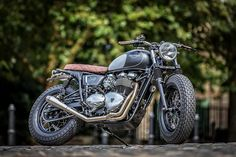 Dutch's Triumph 8