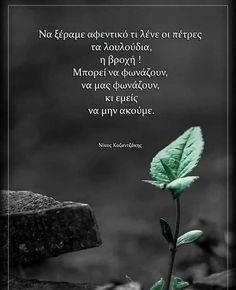 Good Morning, Greek, Plants, Buen Dia, Bonjour, Greek Language, Bom Dia, Plant, Buongiorno