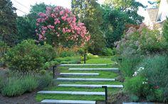 Ландшафтный дизайн для семейного отдыха в Вирджинии